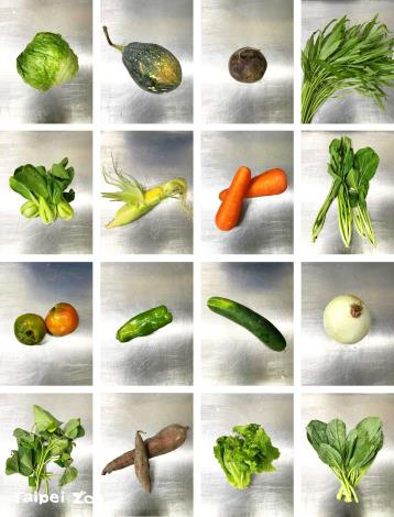 The formula recipe generally consists of four groups vegetables, fruits, plants, and dry food