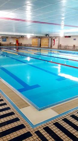 溫水游泳池全景