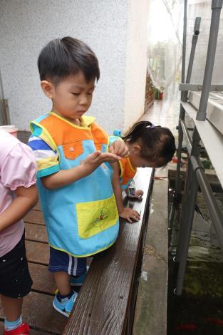 1070904-05餵魚04.JPG