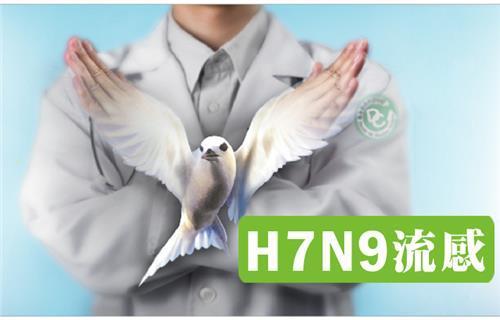 H7N9防疫專區