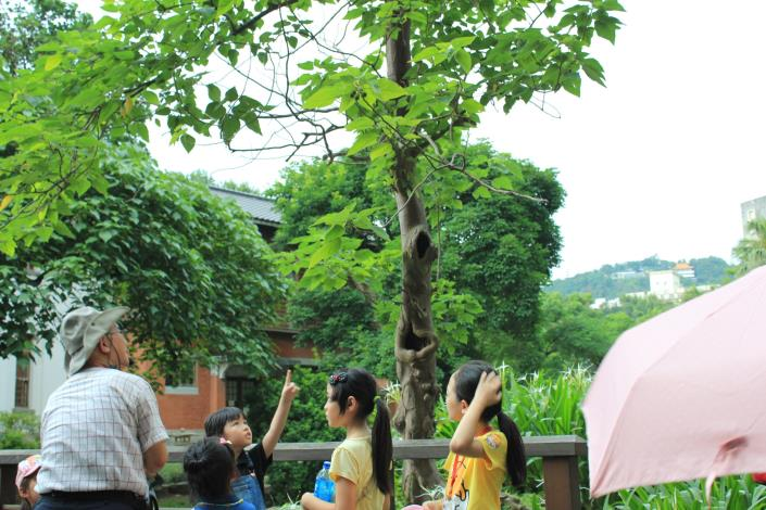 導覽員介紹樹上鳥兒