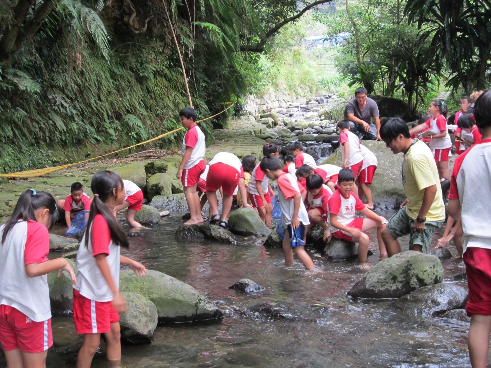 stream playing water