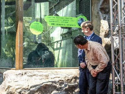 Taipei Zoo Bids Farewell to Gorilla Bao Bao