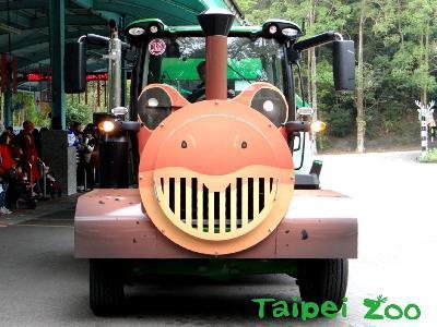 Choo-choo! All Aboard the Taipei Zoo's Pangolin and Frog Trains!