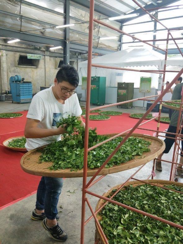 Outstanding young tea farmer Chang Chia-kai from Muzha