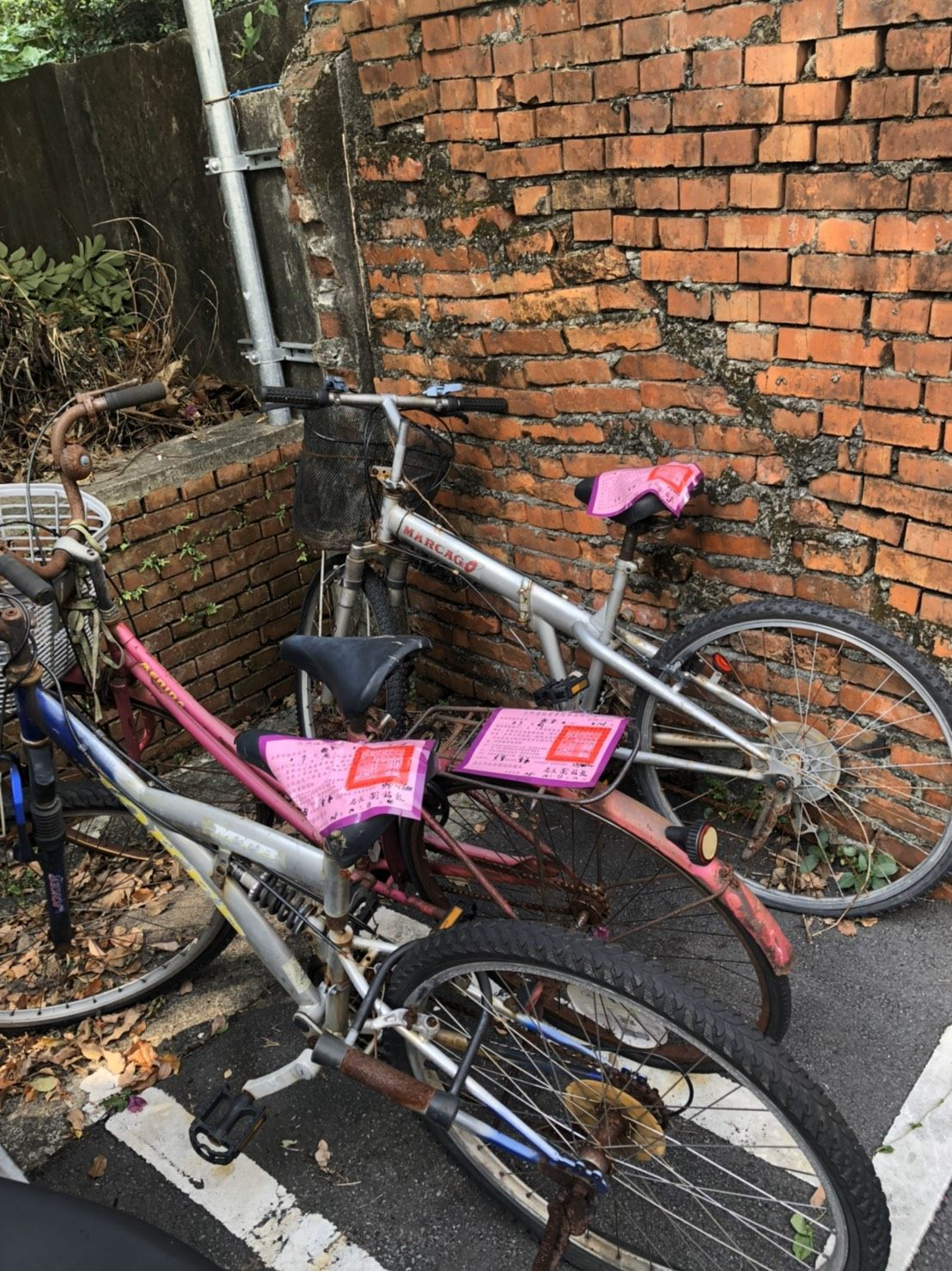 Abandoned bicycles in Taipei
