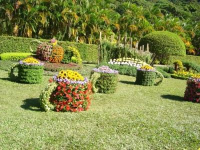 Flower Festival 9
