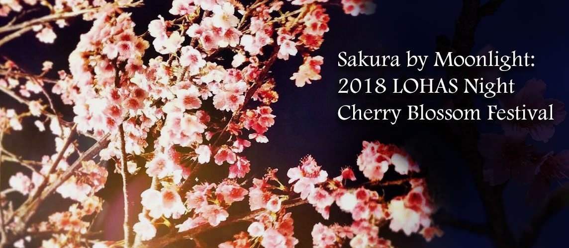 Sakura by Moonlight: 2018 LOHAS Night Cherry Blossom Festival