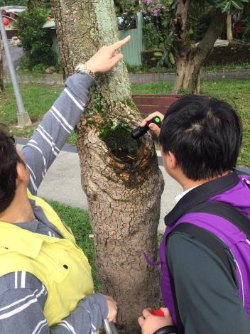 圖一:防疫同仁於社區周邊進行積水容器巡查