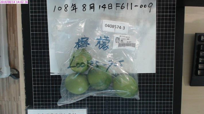 19-檸檬