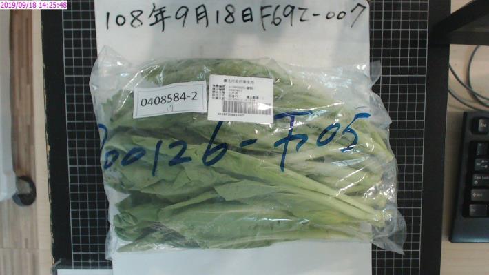 7-小芥菜