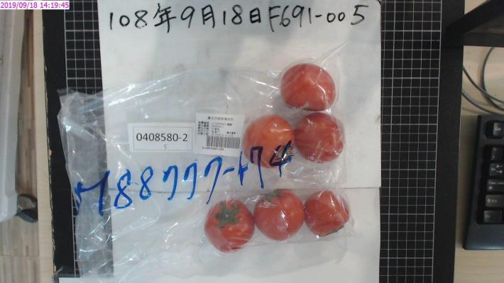 4-牛番茄