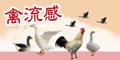 禽流感[開啟新連結]