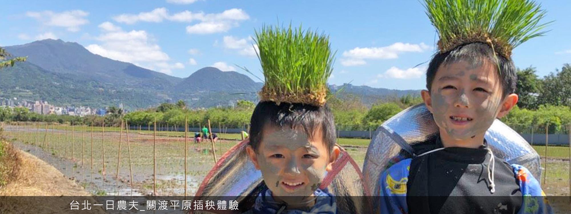 台北一日農夫_關渡平原插秧體驗
