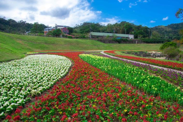 鮮明亮麗的色彩,讓清幽的園區熱鬧了起來