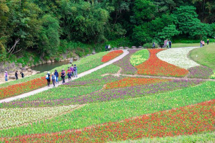 假日不妨規劃一趟大溝溪小旅行,全家大小一起來這裡踏青和賞花
