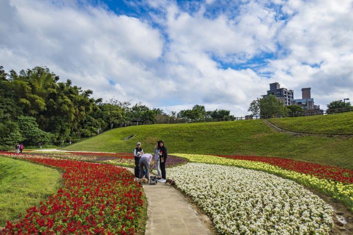 沿著步道散步,就能欣賞五顏六色的美麗花兒 (2)