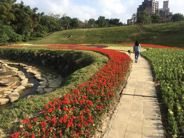 沿著步道散步,就能欣賞五顏六色的美麗花兒