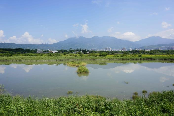 社子島濕地 是臺北市難得可貴的濕地生態