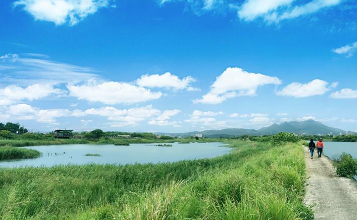 社子島濕地為台北人台北人帶來最療癒的自然生態。