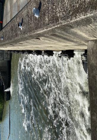 士林抽水站機組更新 抽水測試