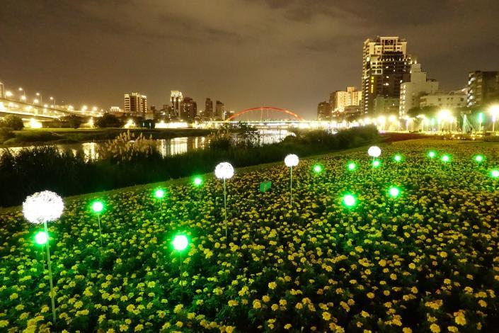 成美左岸河濱公園花海首次嘗試於花海中布置景觀燈飾.JPG