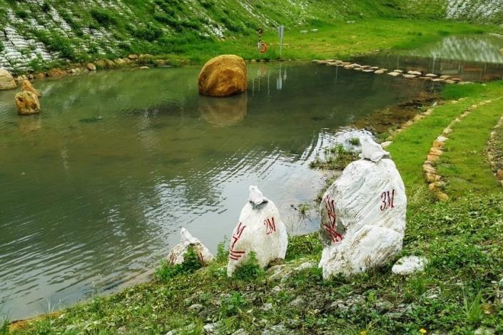金瑞治水園區 周圍野溪活水源源注入 孕育豐富生態環境