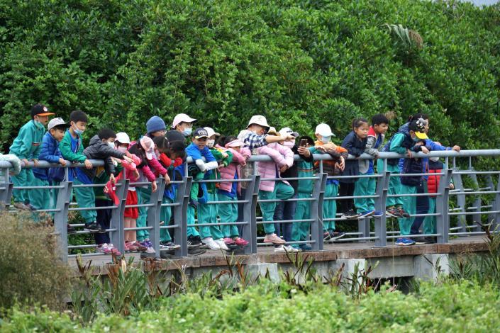 社子島濕地解說小築周末環教活動推出後廣受大小朋友好評