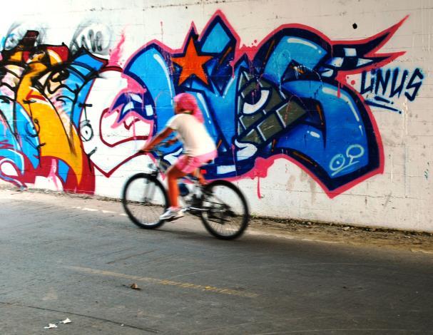 北市河濱公園內的7處堤壁塗鴉區 已塗刷完畢.JPG