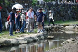 內溝溪生態展示館水池生態講解圖