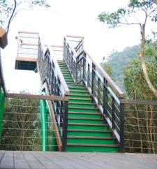 風衝林觀景台