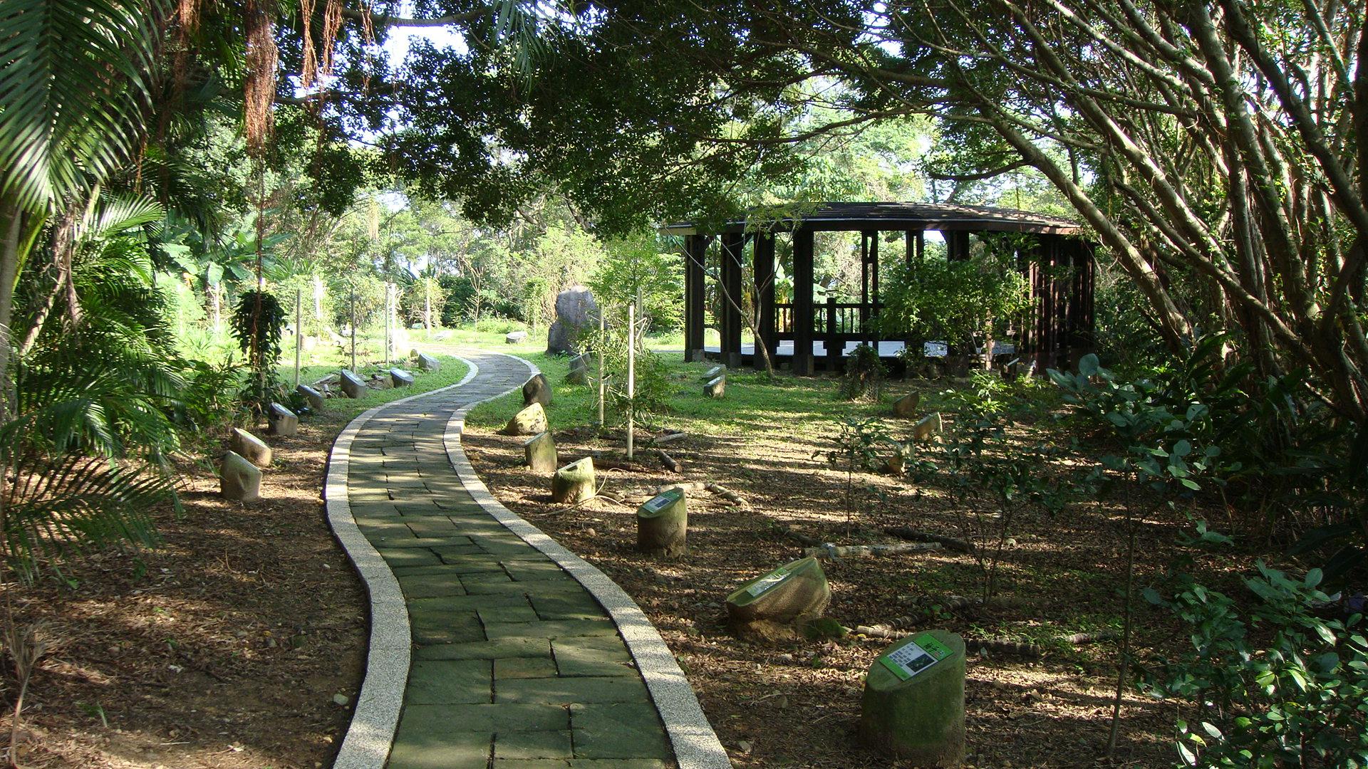 劍南蝶園食草植物區
