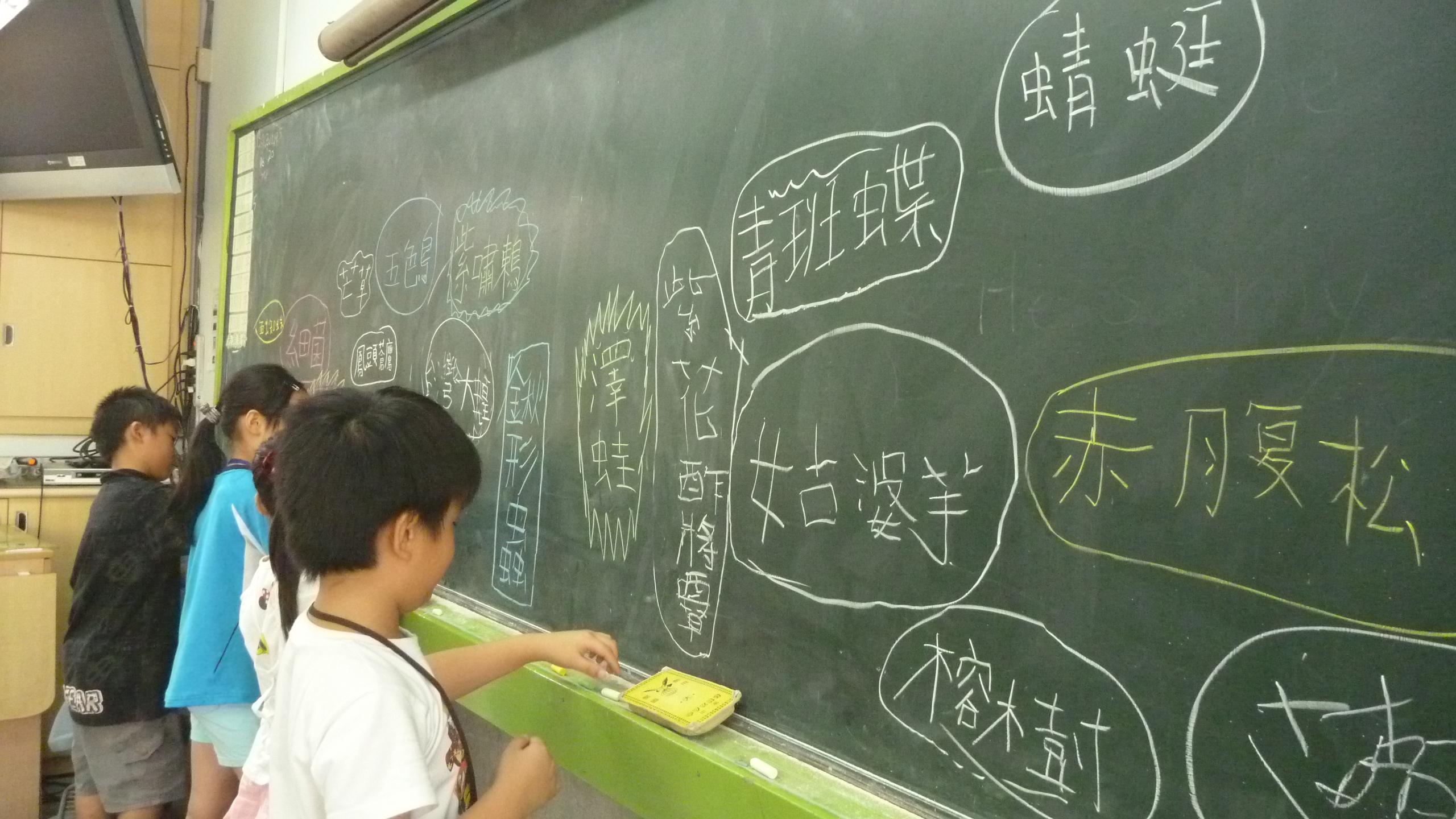 在黑板上畫下巨大生物網