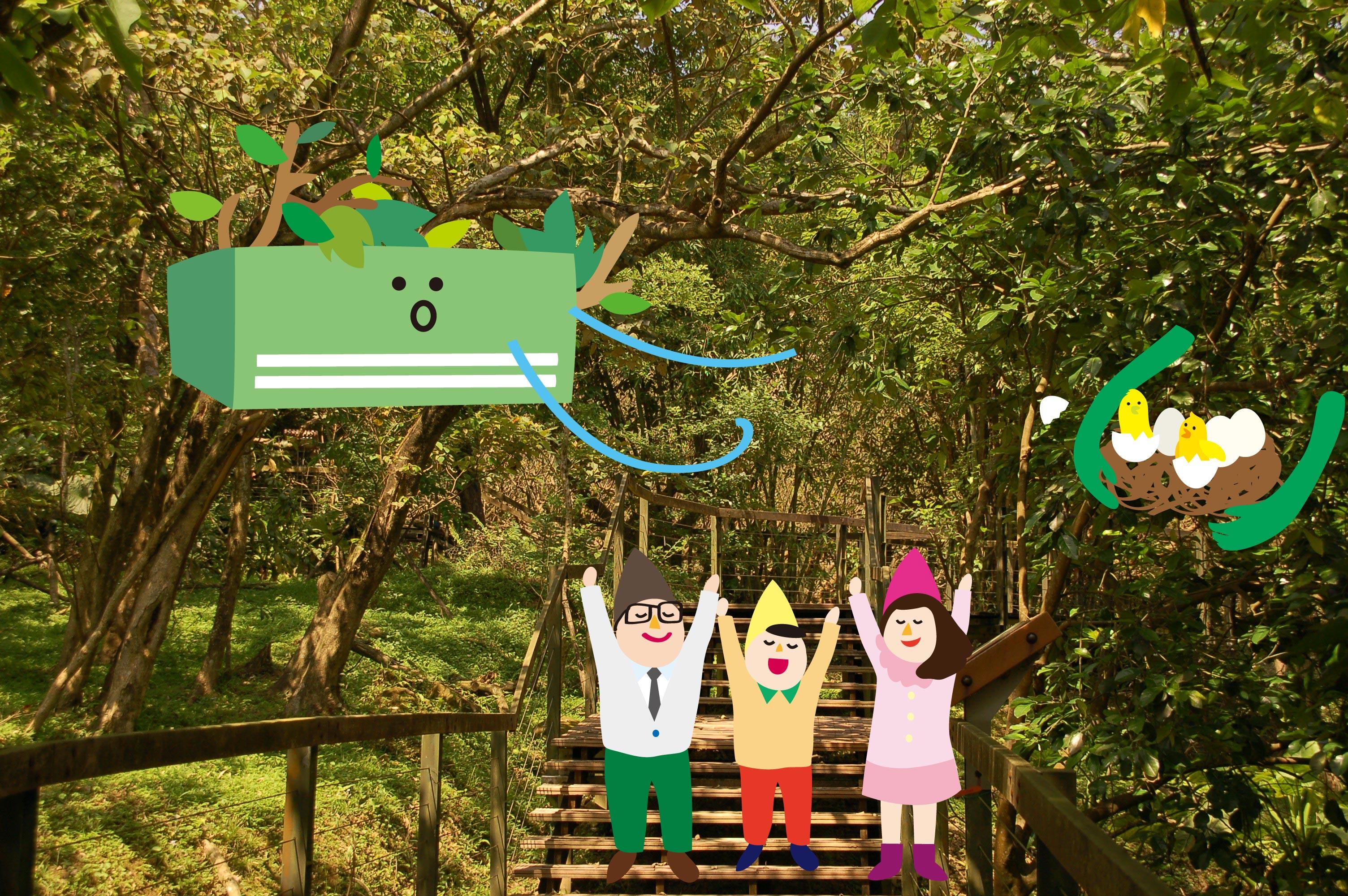 內雙溪自然中心告訴你,森林裡的各種小祕密!