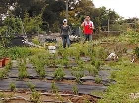 一方市民農園6