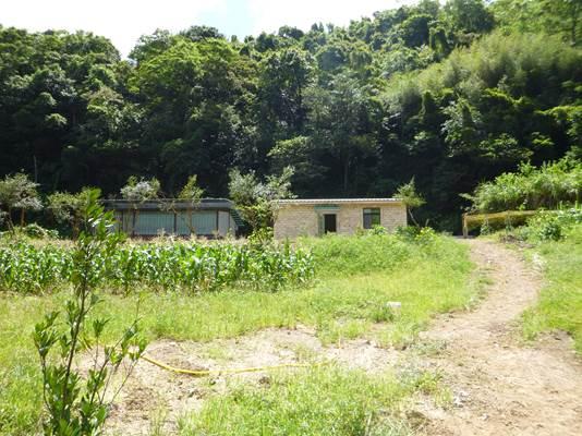 簡易蔭棚與農業資材室棟距約4公尺