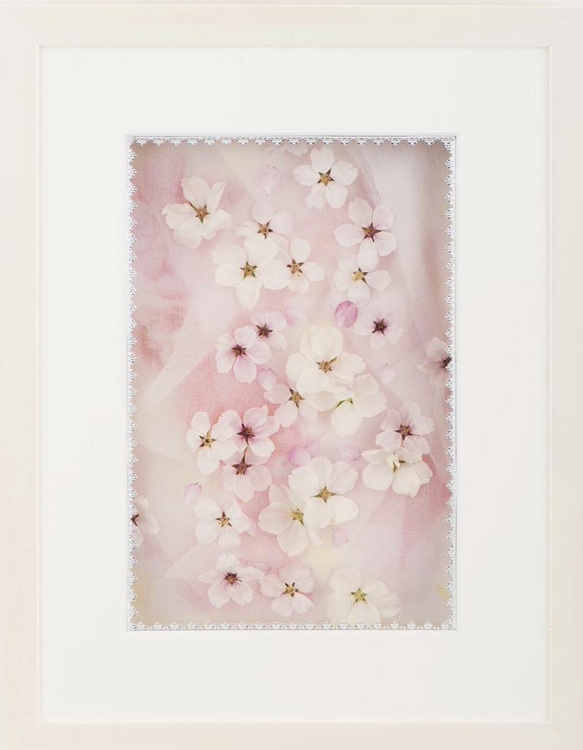 圖2. 日本大師-杉野宣雄的粉嫩櫻花畫