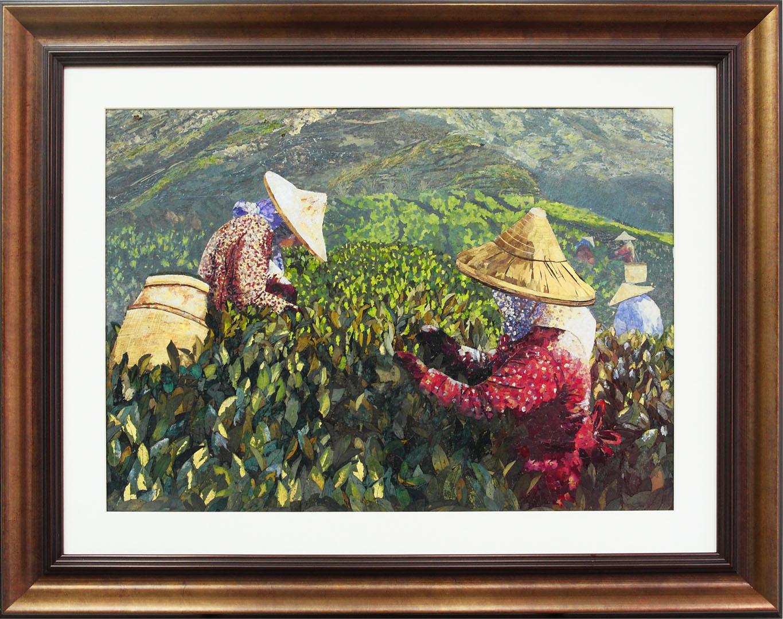 圖3.充滿茶園生命力的「阿里山茶園」