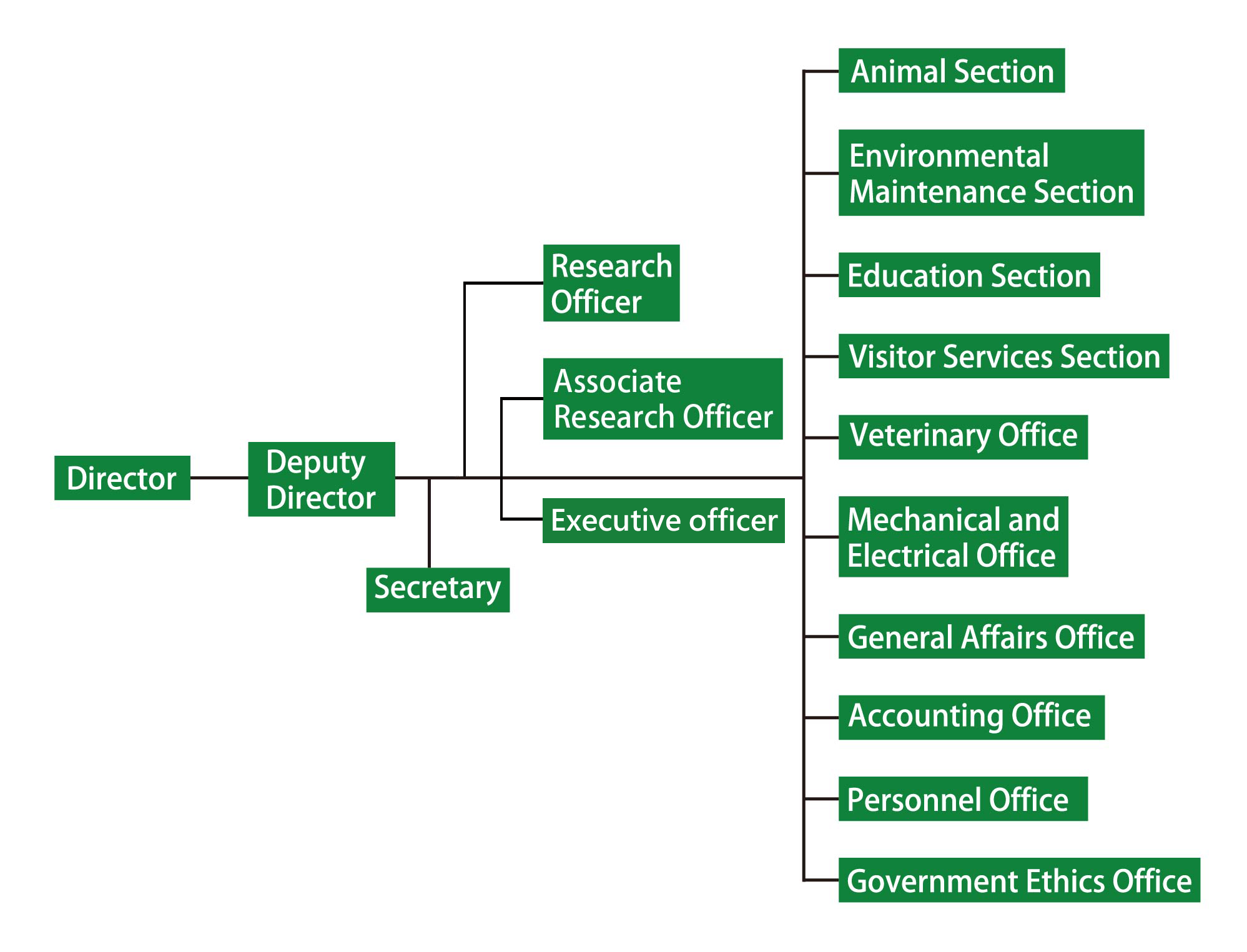 Taipei Zoo Organizational Structure