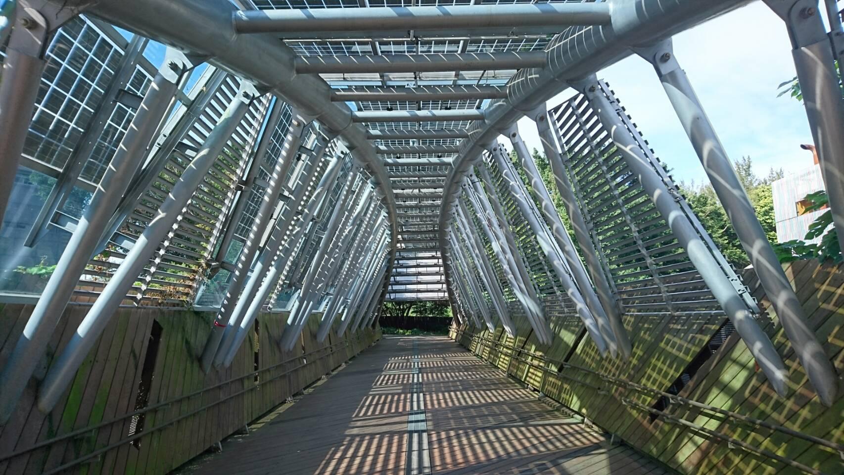 圖7、展現力與美的太陽橋。