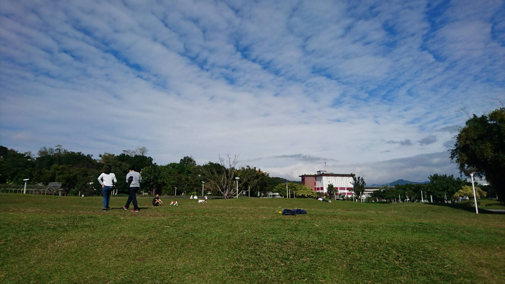 圖9、上看藍天平躺綠地,廣大腹地的圓山園區。