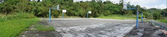 大湖山莊成功社區內籃球場 照片1