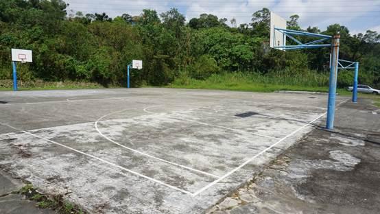 大湖山莊成功社區內籃球場 照片3
