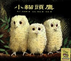 bookstart書單_小貓頭鷹