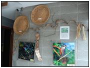 開新視窗-生態展示館12原圖