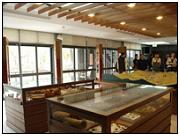 開新視窗-照片內溝溪生態展示館2