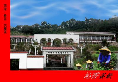 Tea Production Plant