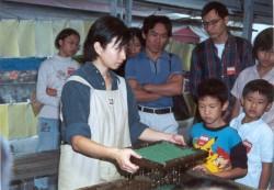 Suho Paper Memorial Museum
