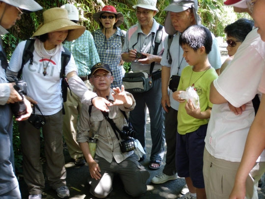 Professor Liou teaching volunteers on how to interact with Nephila pilipes