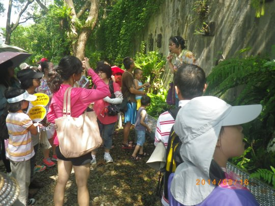 Participants visiting outdoor floras and faunas